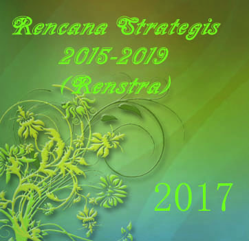 Cover Renstra17